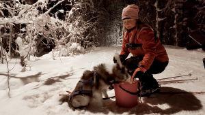 Sann  Rasimus syöttää koiraa koirahiihto-lenkin jälkeen