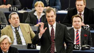 Meppi Nigel Farage puhumassa Euroopan parlamentissa 16. tammikuuta.