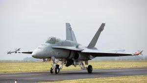 Hornet-hävittäjä maassa.