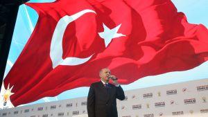 Turkin presidentti Recep Tayyip Erdogan puhuu mikrofoniin, hänen yläpuolellaan liehuu maan lippu.