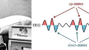 Kuvaparissa nukkuvan koehenkilön päähän on kiinnitetty antureita. Toisessa kuvassa aivokäyrä