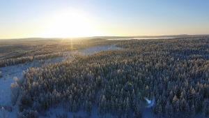 Ilmakuvaa suunnitellun Raanujärven tuulipuiston alueelta.