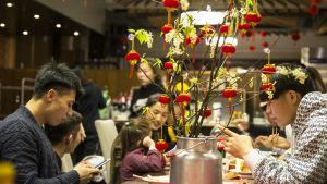 Kiinalaiset ravintolassa Vuokatissa.