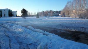 Isto Janhunen / Yle