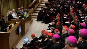 Katolisen kirkon ylin johto kokoontui neljäksi päiväksi Vatikaaniin keskustelemaan seksuaalisen hyväksikäytön estämisestä.