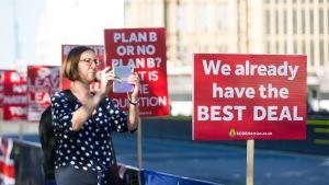 Brexitin vastustajat osoittivat mieltään parlamentin edustalla Lontoossa maanantaina.