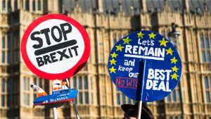 Brexitin vastustajat osoittivat mieltään parlamentin edessä maanantaina.