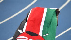 Kenian lippu
