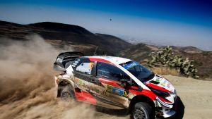 Toyotan Jari-Matti Latvala vauhdissa Meksikon MM-rallissa.