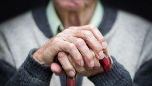 Vanha mies  pitää kävelykepistä molemmin käsin