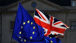 Eu:n ja Iso-Britannian liput parlamenttirakennuksen edessä.