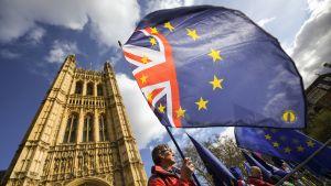 Brexit mielenosoittajia