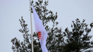 Stora Enson lippu.