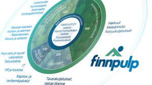 Finnpulpin osaamistarpeet -grafiikka