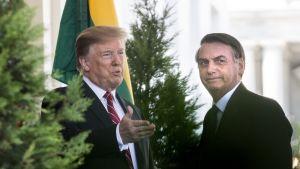 Donald Trump ja Jair Bolsonaro.