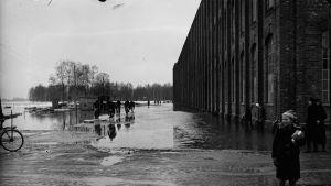 Porin tulva 50-luku
