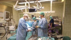 Kirurgi ja hoitajat leikkaussalissa tekemässä sappileikkausta