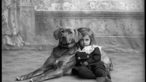 Pieni tyttö suuren lemmikoiran kyljessä.