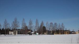 Neuronin rakennuksia Kuopion Kortejoella.