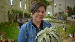 Yrittäjä Johanna Vireaho esittelee ilmakasveja