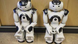 Kuvassa kaksi Nao-robottia