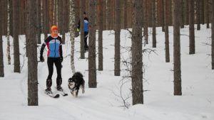 Ihmisiä ja koira metsäpolulla.