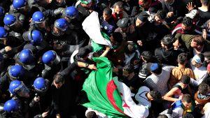 Poliisit ja tavallinen kansa ottamassa yhteen Algerian pääkaupungissa perjantaina 29. maaliskuuta 2019.