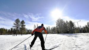 Hiihtäjä hiihtelee aurinkoisella kelillä Heinolassa Vierumäen reitillä perjantaina 29. maaliskuuta 2019.