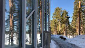Puut heijastuvat Nurmes-talon ikkunoista.
