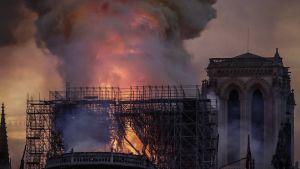 Liekit roihuavat Notre Damen katedraalin katolla.
