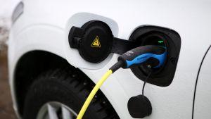 Sähköauton latauspistoke on kiinni autossa.