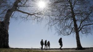 Ulkoilijoita kävelyllä lämmittävässä kevätauringossa Helsingin Eiranrannassa 17. huhtikuuta 2019.