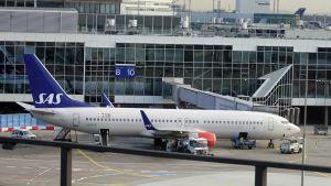 Tässä SAS:n kone Frankfurtin lentokentällä Saksassa marraskuussa 2017.