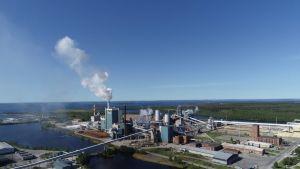 Metsä Groupin tehdasalue Kemissä