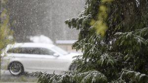 Auto ja lumisadetta