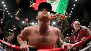 Saul Alvarez juhlii voittoa.