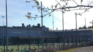 Koulu, jonka edessä paljon koululaisten polkupyöriä.