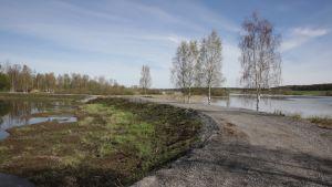 Alavudenjärven rannan vierelle on rakennettu Pahajoen kosteikko, jonka tarkoituksena on kerätä esimerkiksi pelloilta valuvia ravinteita ja kiintoaineita.