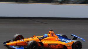 Fernando Alonso kuvassa