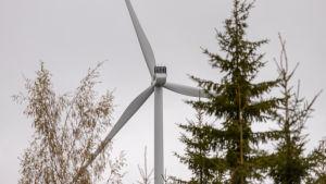 Tuuliturbiini metsän takana