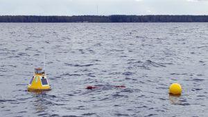 Säkylän Pyhäjärvi mittauspoijuja sääasema