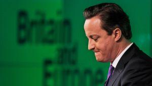 David Cameron 23.1.2013