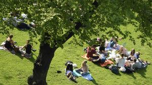 Ihmiset viettävät lämmintä kesäpäivää Esplanadin puistossa Helsingissä 4. kesäkuuta.