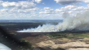 Etelä-Karjalan pelastuslaitoksen handout-kuva Taipalsaaren turvetuotantoalueen tulipalosta, 10. kesäkuuta.