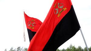 Kaksi karjalaisten punamustaa lippua
