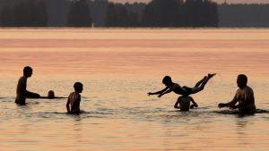Aikuisia ja lapsia uimassa auringonlaskun aikaan.