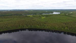 Sierilän voimala tulisi keskelle kuvassa näkyvää Sieriniemeä, jonka poikki kaivetaan runsaan kilometrin pitkä voimalaitoskanava. Kuva on alajuoksun suuntaan taustalla näkyy Kemijoen ylittävä Oikaraisen silta. Sieriniemi, Rovaniemi 12.6.2019