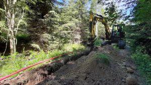 Kaivuri kaivaa maata metsässä