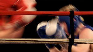 nyrkkeily kuvitus