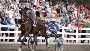 Raviohjastaja Jorma Kontio (nro. 3) voitti hevosellaan Hachiko De Veluwe 10. lähdön Suur-Hollola-ajon loppukilpailuissa Lahdessa sunnuntaina 30. kesäkuuta 2019.